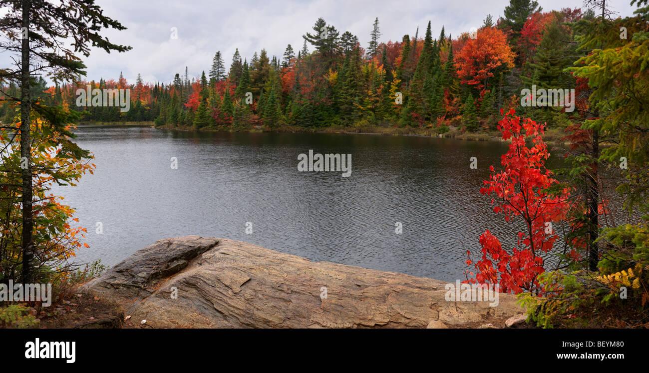 Peck lake panoramic fall nature scenery. Algonquin Provincial Park, Ontario, Canada. - Stock Image