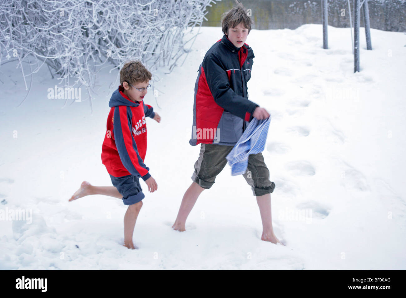 Naked young boys playing in the snow