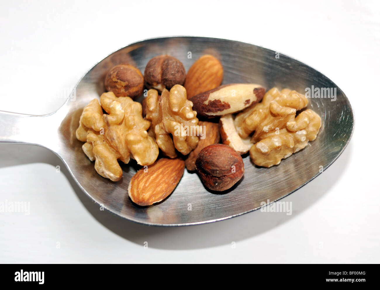 Spoonful of nuts including walnuts hazelnuts brazil nuts and almonds full of protein for healthy diet - Stock Image