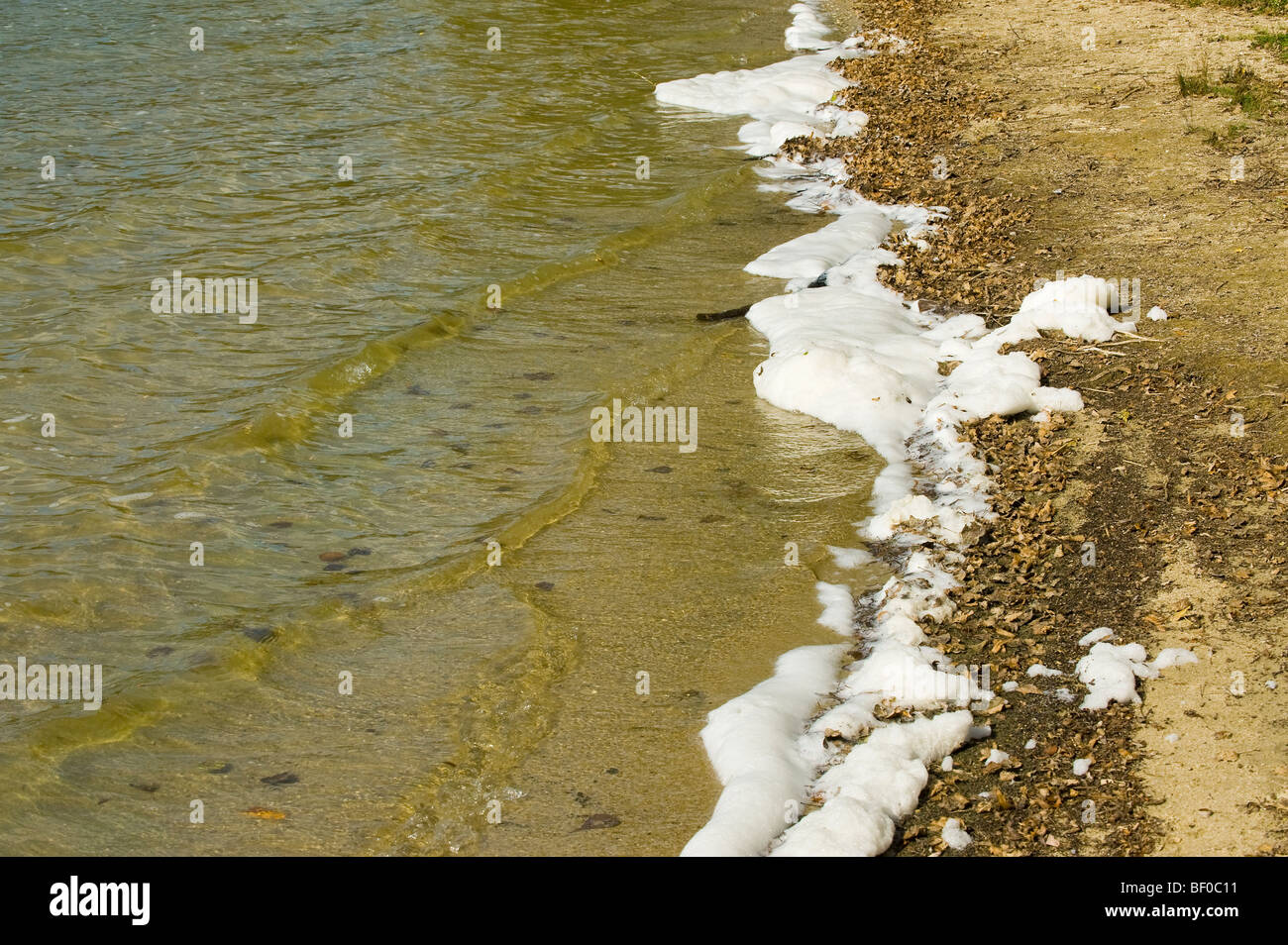 environmental pollution environment water pond bank river beach sand surface foam foaming dirt mud waterline line - Stock Image