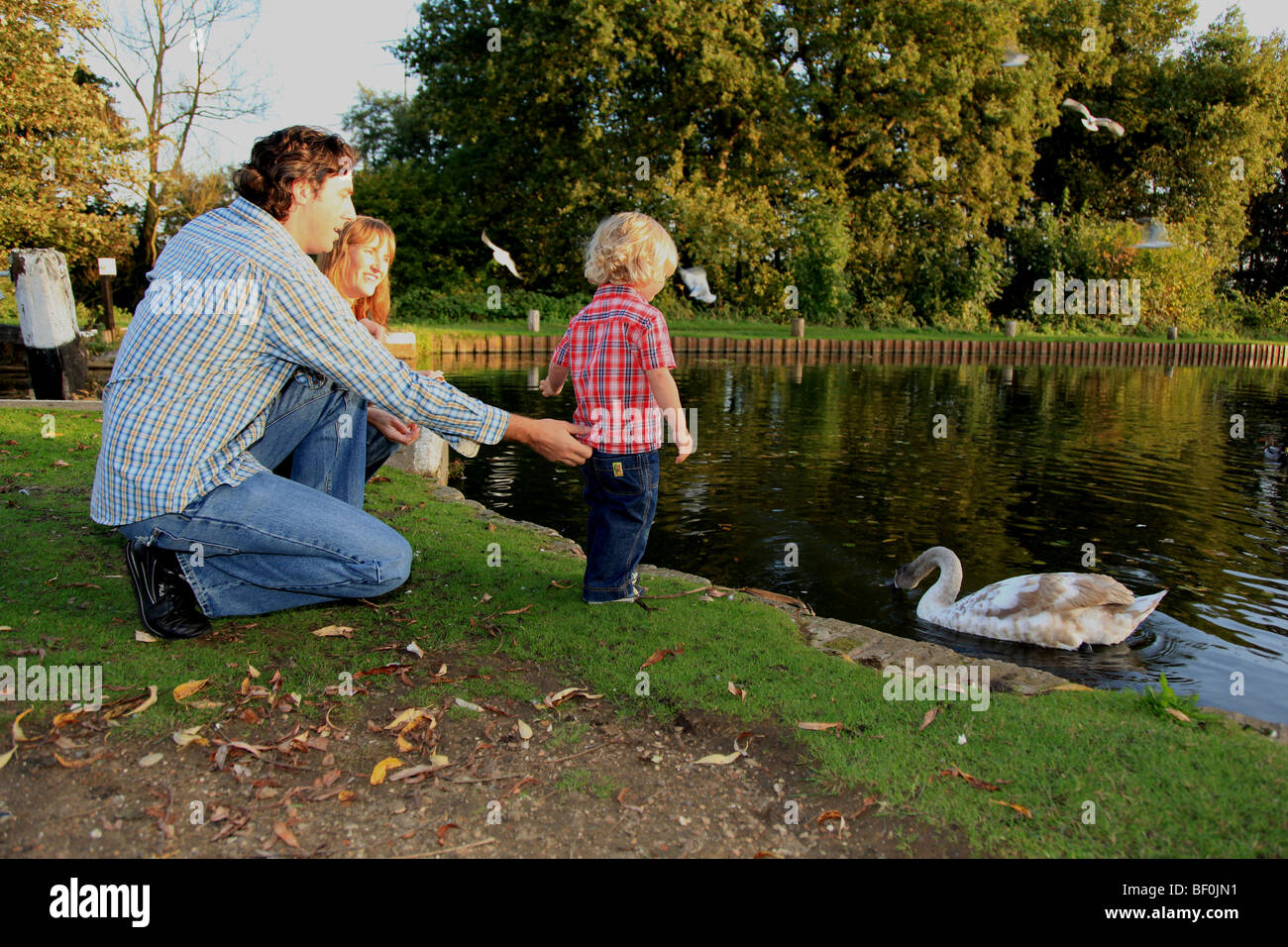 Mum And Dad With Toddler Son Stock Image