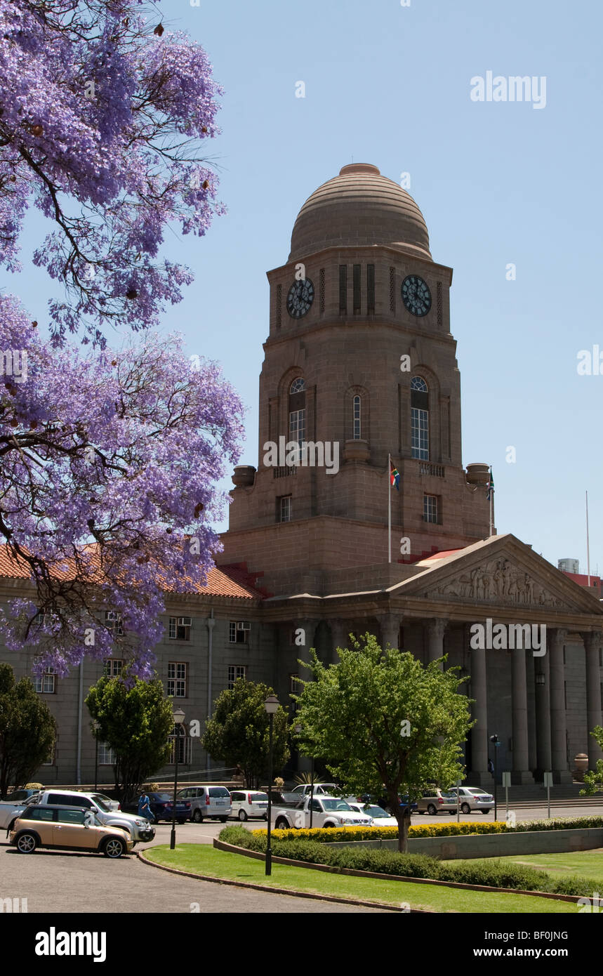 Pretoria City Hall with a Jacaranda in the foreground, South Africa - Stock Image