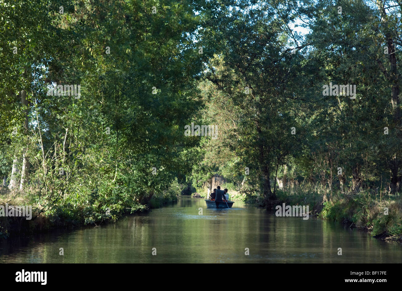 Gentle boating in the quiet waters of France's labyrinthine Marais Poitevin - Stock Image