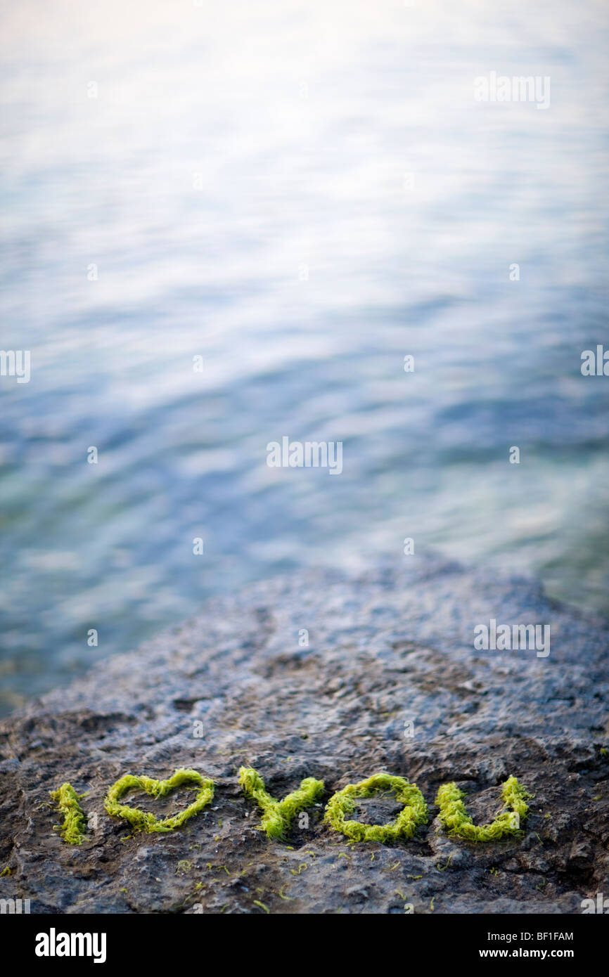 Text written with sea-grass on a rock by the sea, Sweden. - Stock Image
