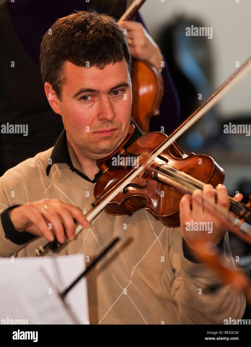 musician violinist string player violin - Stock Image