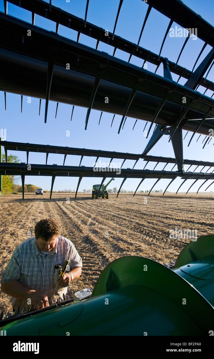 A farmer performs maintenance repairs in the field to his combine during the soybean harvest / near Northland, Minnesota, - Stock Image