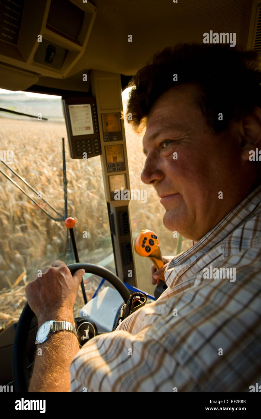 View from inside a combine cab of a farmer operating the combine during the corn harvest / near Northland, Minnesota, - Stock Image
