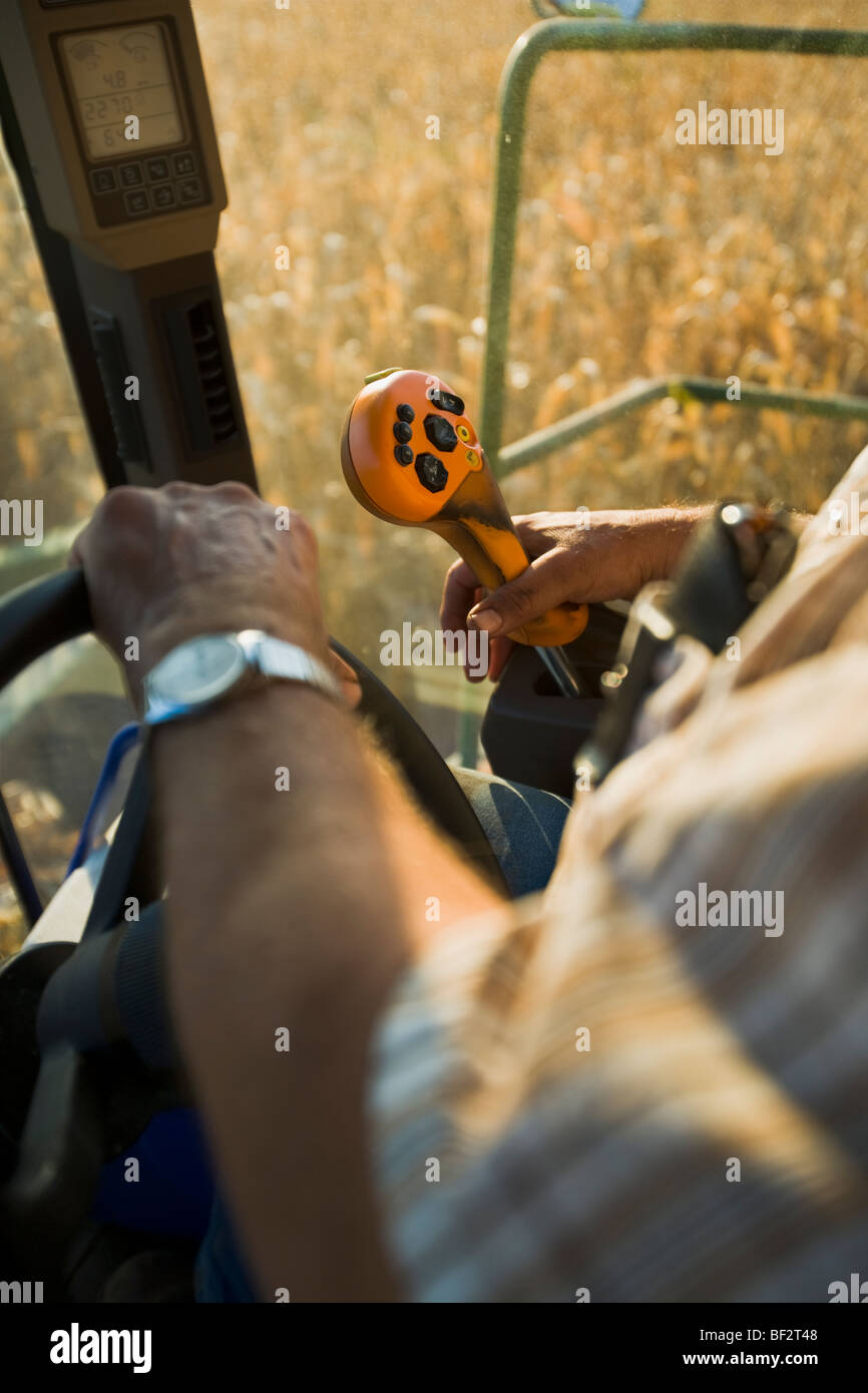 The hands of a farmer operating the controls of a combine during the grain corn harvest / near Northland, Minnesota, - Stock Image