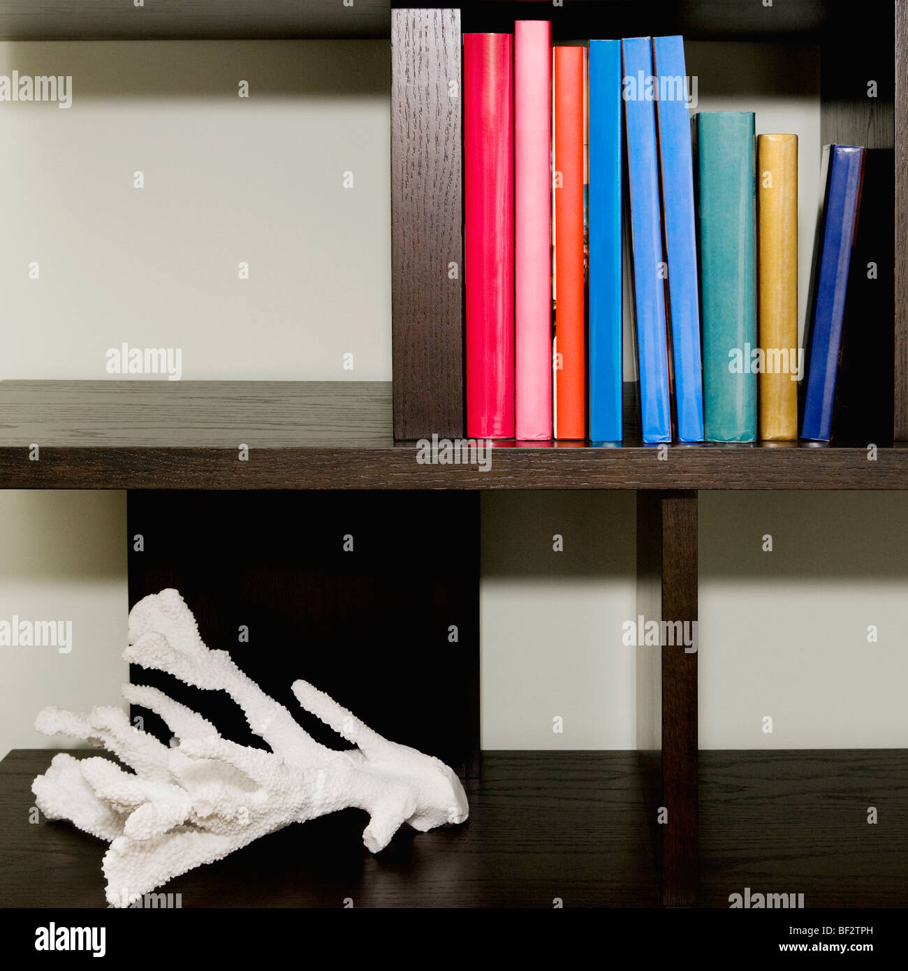 Close-up of books on a shelf - Stock Image