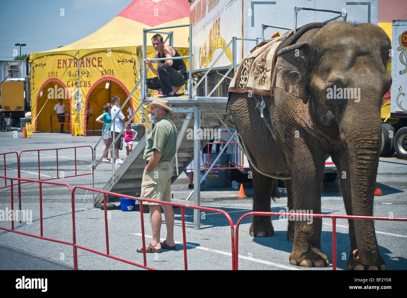 Clyde Beatty Cole Brothers Bros. Circus largest traveling show under canvas America United States - : circus elephant costume  - Germanpascual.Com