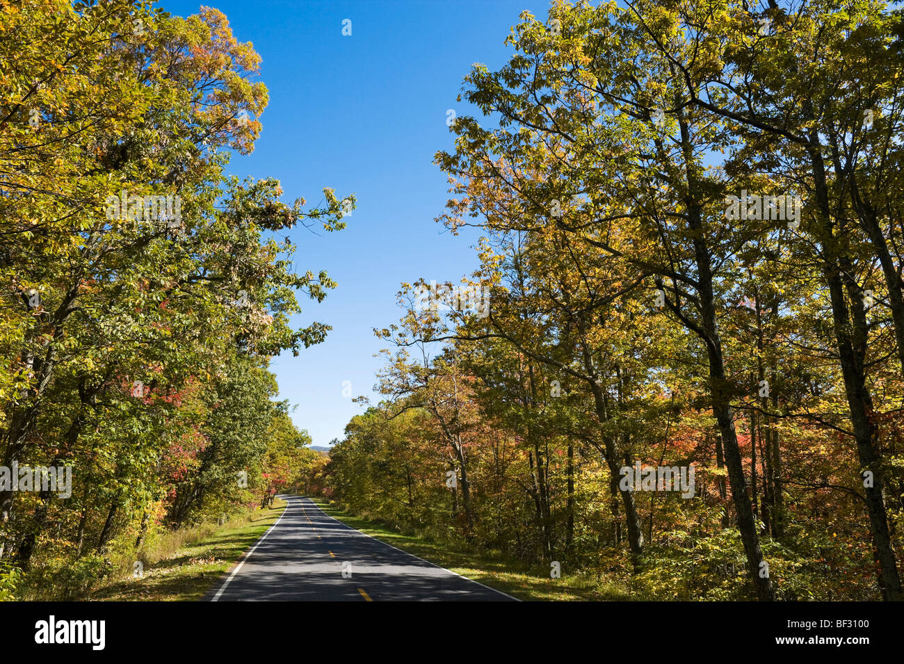 Fall colours on Skyline Drive, Shenandoah National Park, Blue Ridge Mountains, Virginia, USA - Stock Image