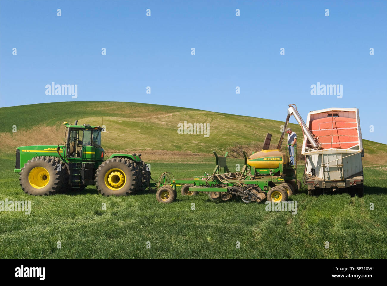 Loading an air seeder with wheat seeds to replant snow damaged areas of winter wheat in the rolling hills of the - Stock Image