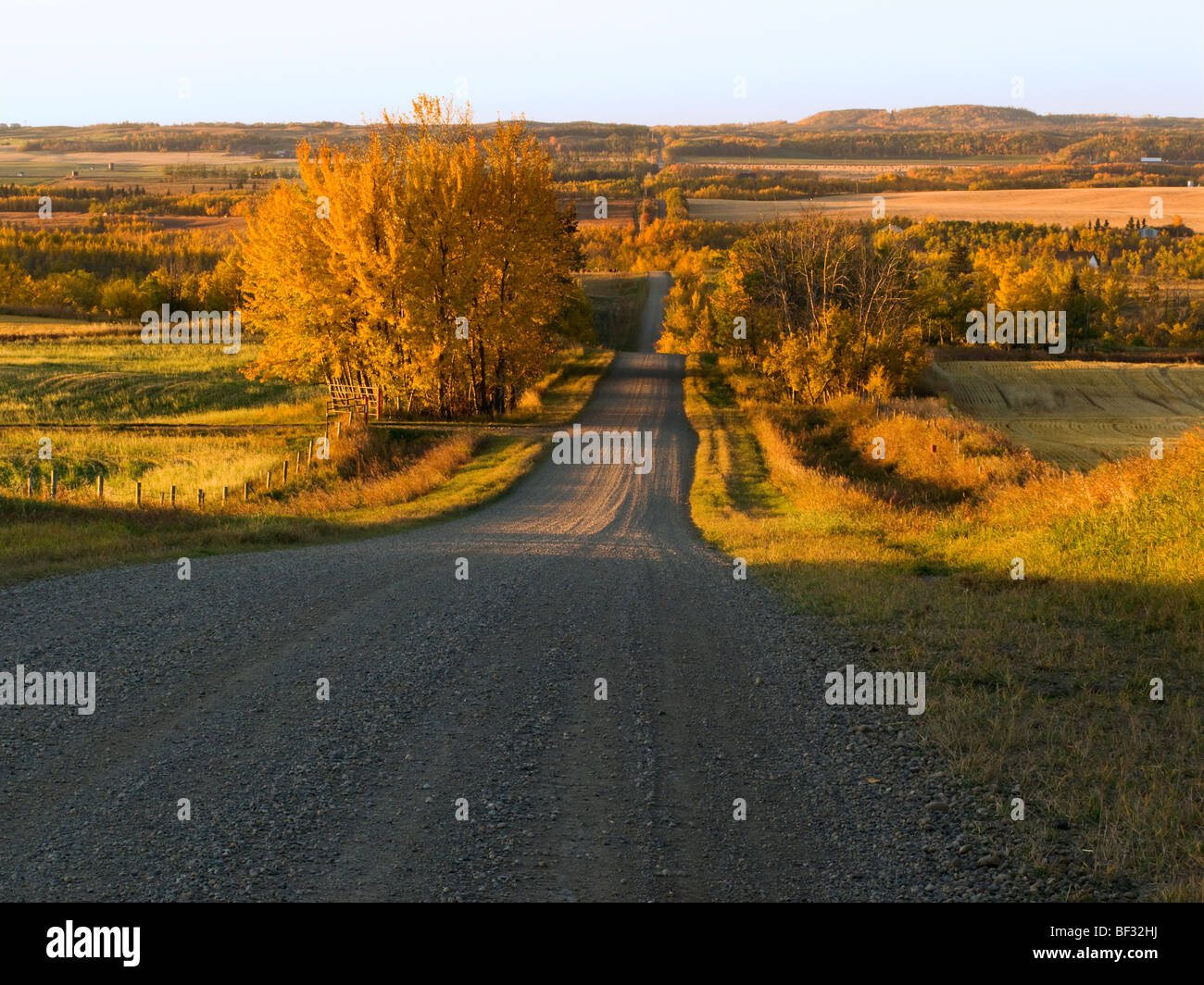 Agriculture - A gravel country road leading to the Red Deer River after sunrise on an Autumn morning / Alberta, - Stock Image