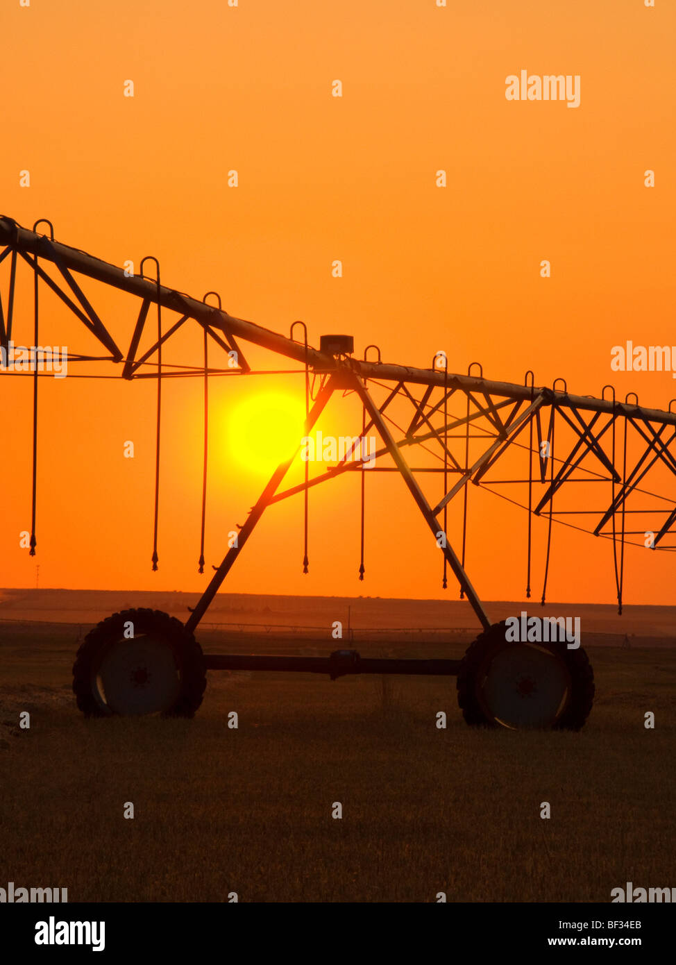 Agriculture - Center pivot irrigation system silhouetted at sunrise on a hay field / Alberta, Canada. - Stock Image