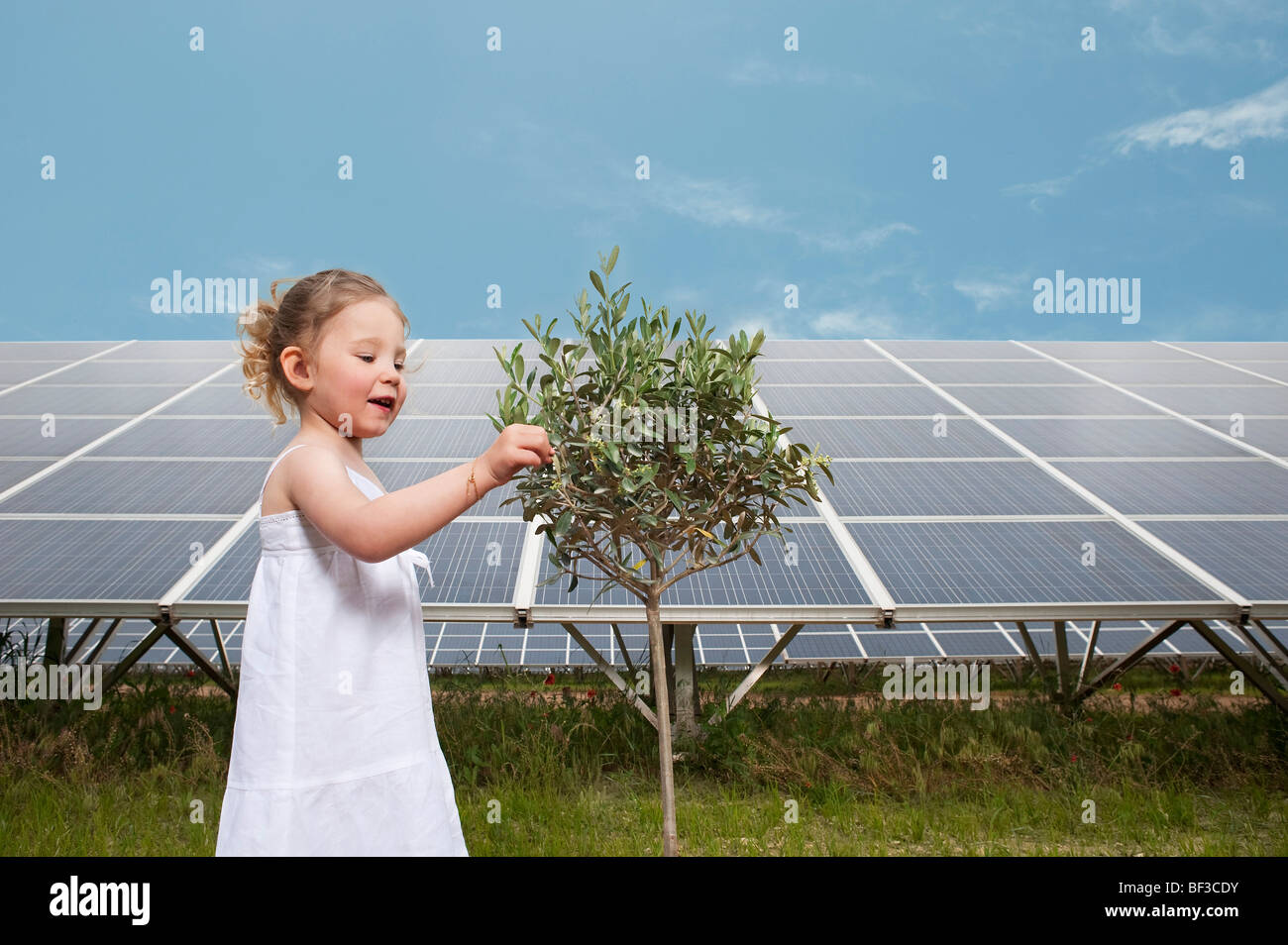girl and tree in front of solar panel - Stock Image