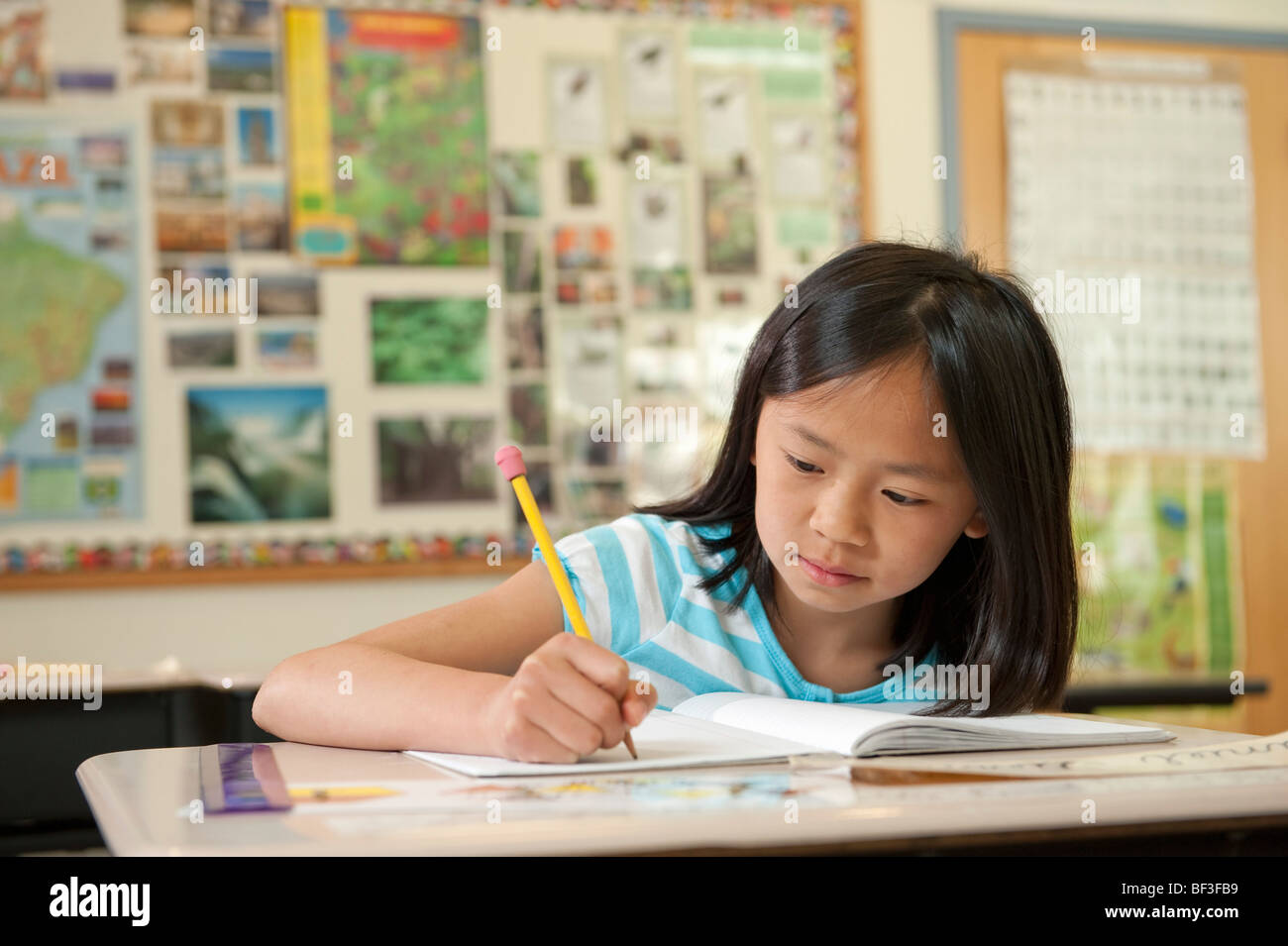Elementary school student working - Stock Image