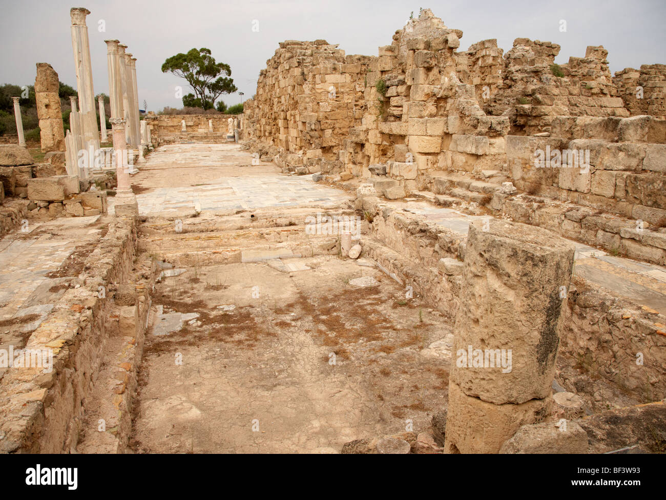 swimming pools in the gymnasium and baths in the ancient site of old roman villa salamis famagusta - Stock Image
