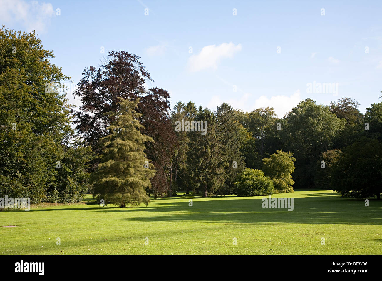 Trees in the grounds of the National Botanic Gardens Nationale Plantentuin Meise Brussels Belgium - Stock Image