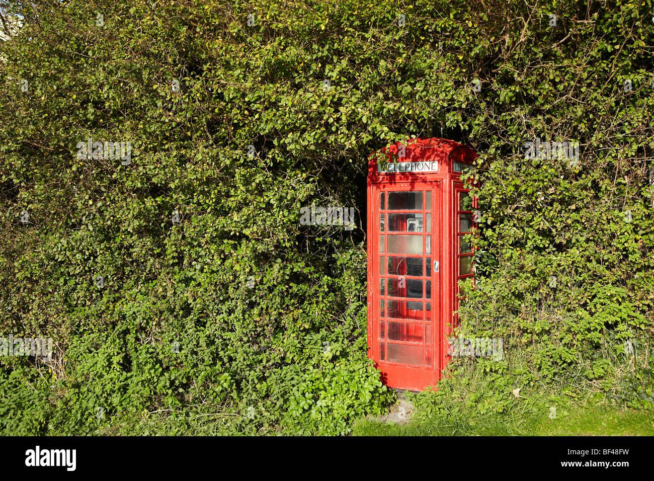 Red Telephone Kiosk in Ceredigion, West Wales, UK - Stock Image