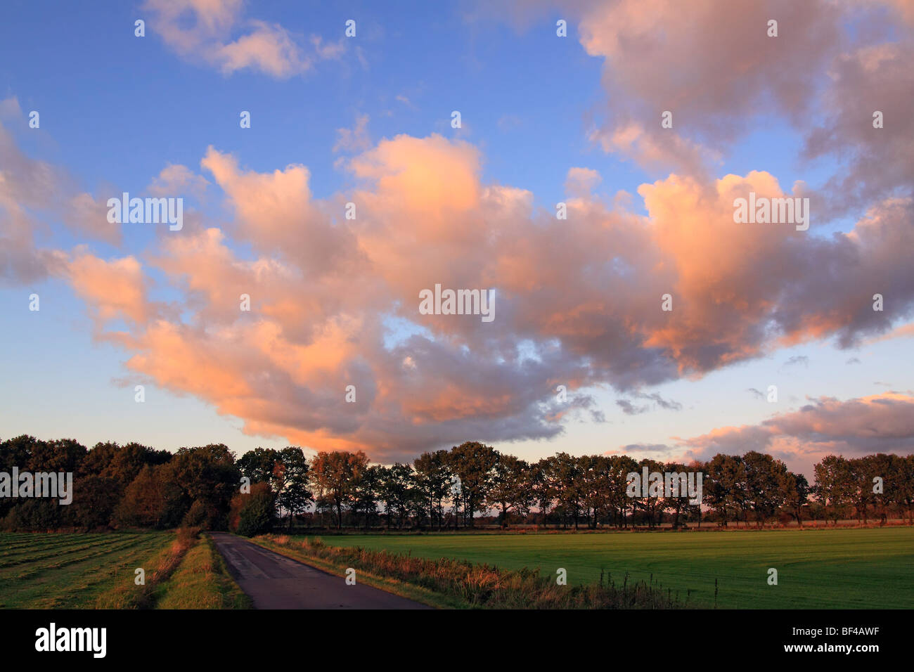 Dramatic sky with clouds illuminated in red light from the late evening sun at sunset, landscape in Oberalsterniederung - Stock Image