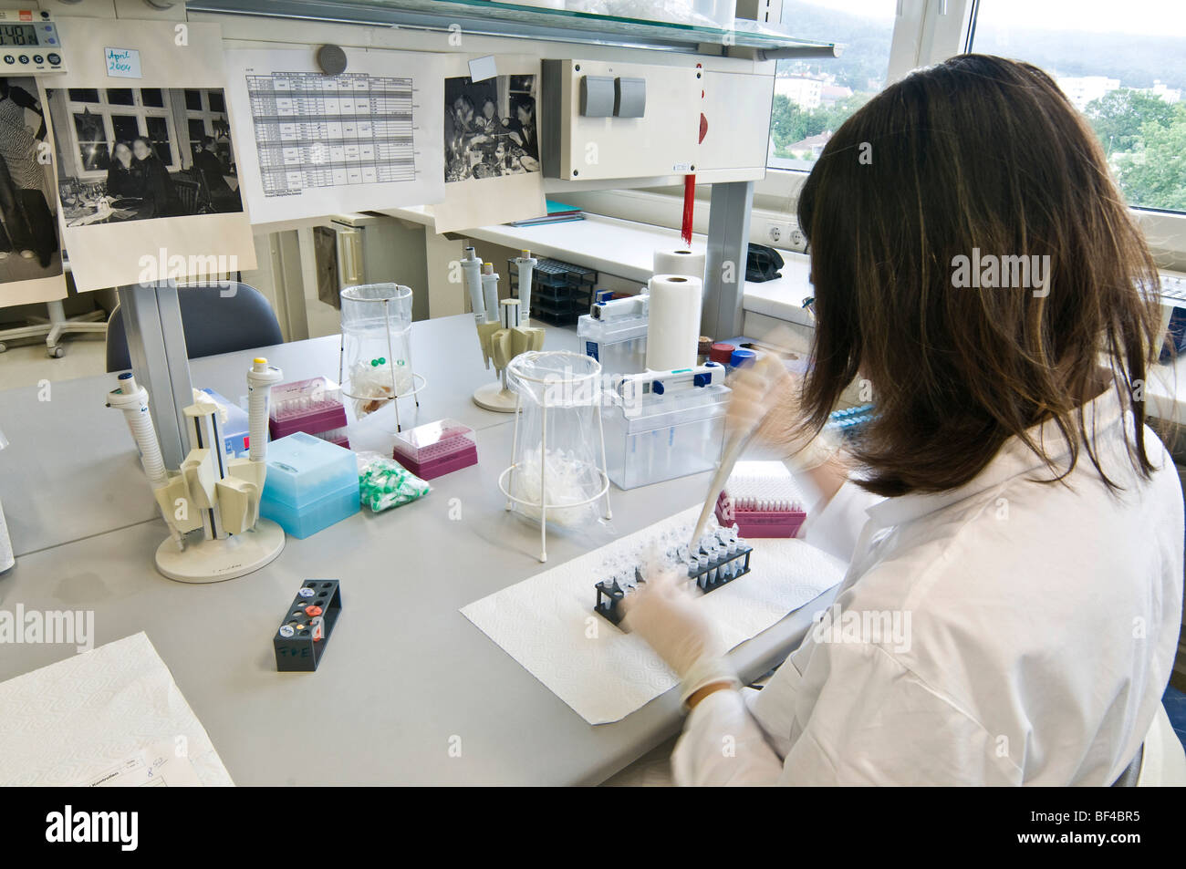 Chemist in a laboratory - Stock Image