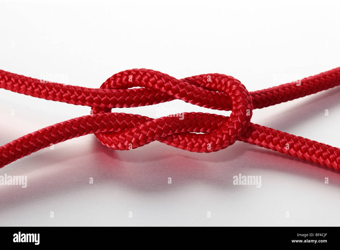reef knot - Stock Image