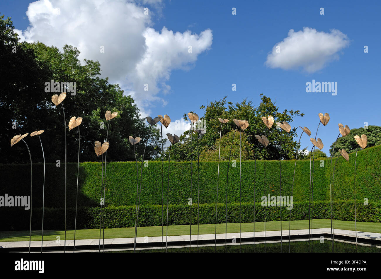 Modern Art by Simon Allison, 'Gold-plated bronze leaves on steel rods', in Kiftsgate Court Gardens, Mickleton, - Stock Image