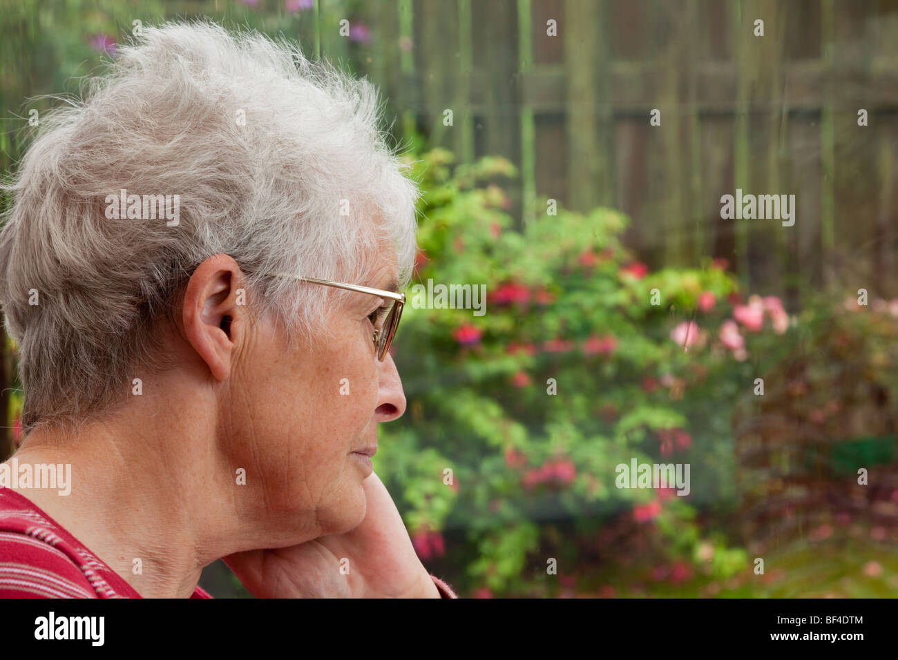 Unhappy lonely depressed elderly senior woman with a sorrowful expression looking out through a window to a garden - Stock Image