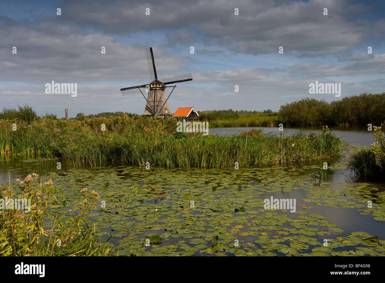 Kinderdijk, polder mill, South Holland, Holland, Netherlands, Europe - Stock Image