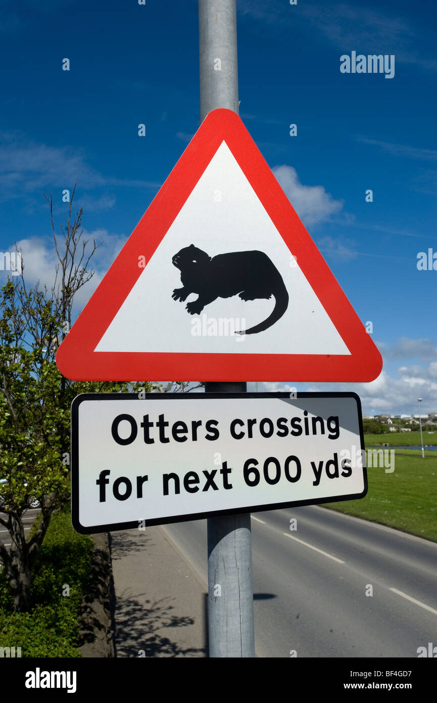 Warning label, 'otters crossing', Kirkwall, Orkney Islands, Scotland, United Kingdom, Europe - Stock Image