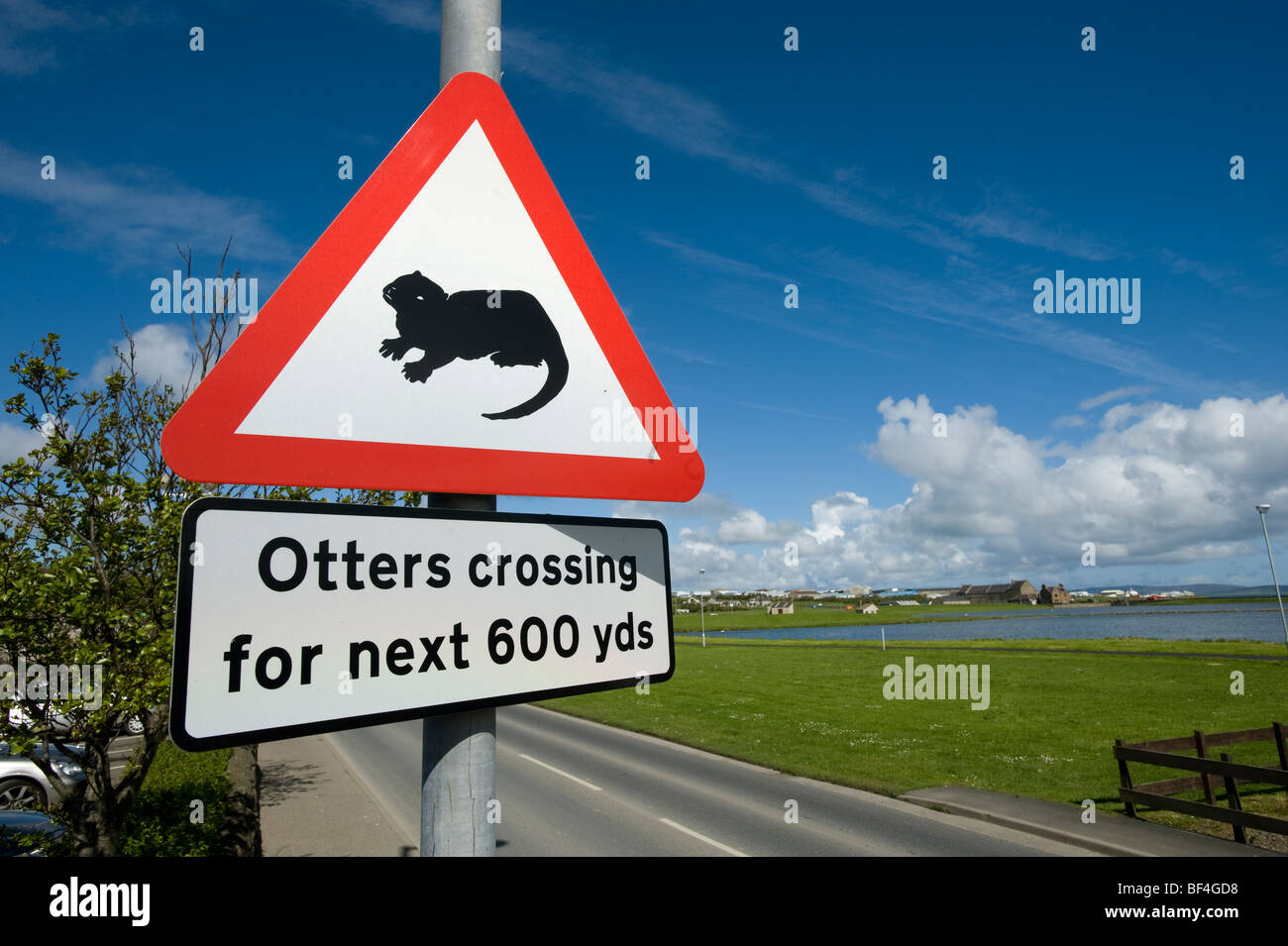Warning label, 'otters crossing', Kirkwall, Orkney Islands, Scotland, United Kingdom, Europe - Stock Image