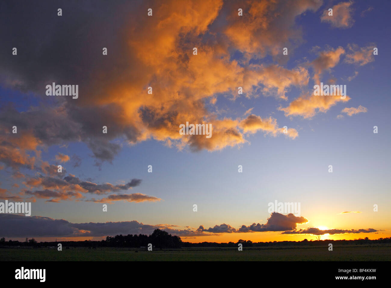Dramatic sky with clouds illuminated from below by the late evening sun at sunset, landscape in Oberalsterniederung - Stock Image