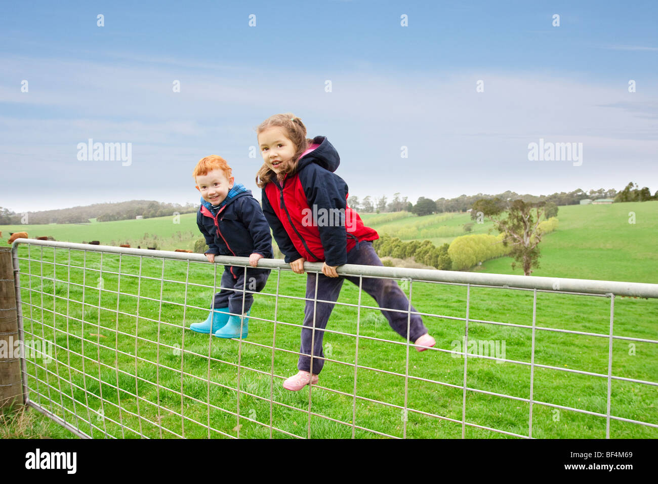 Young boy and girl on farm gate with rural farm background - Stock Image