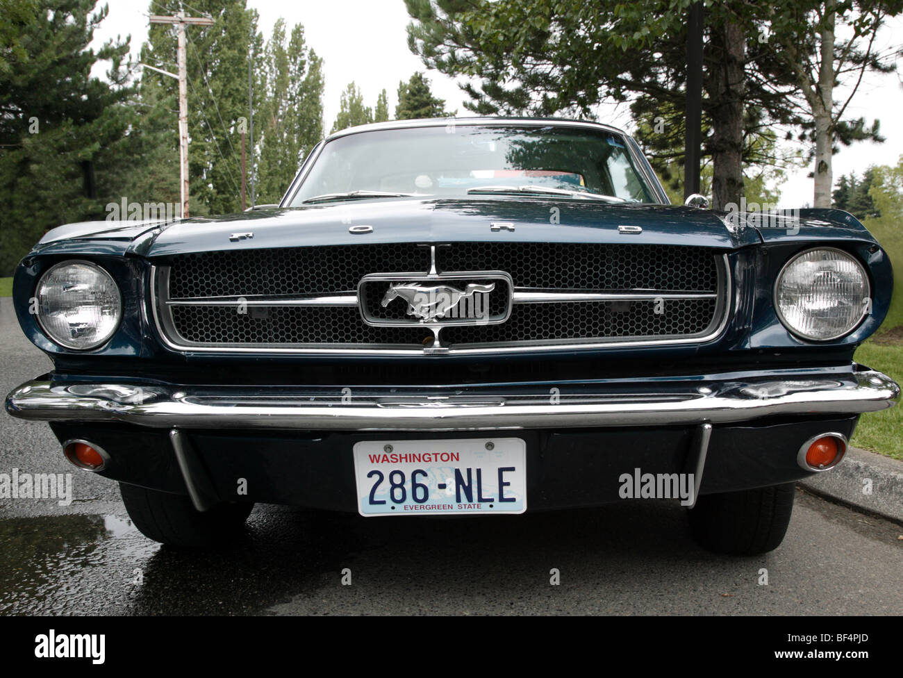 1965 First generation Ford Mustang on show at  the 22nd annual Northwest Muscle Car Show,  Issaquah, Washington, - Stock Image