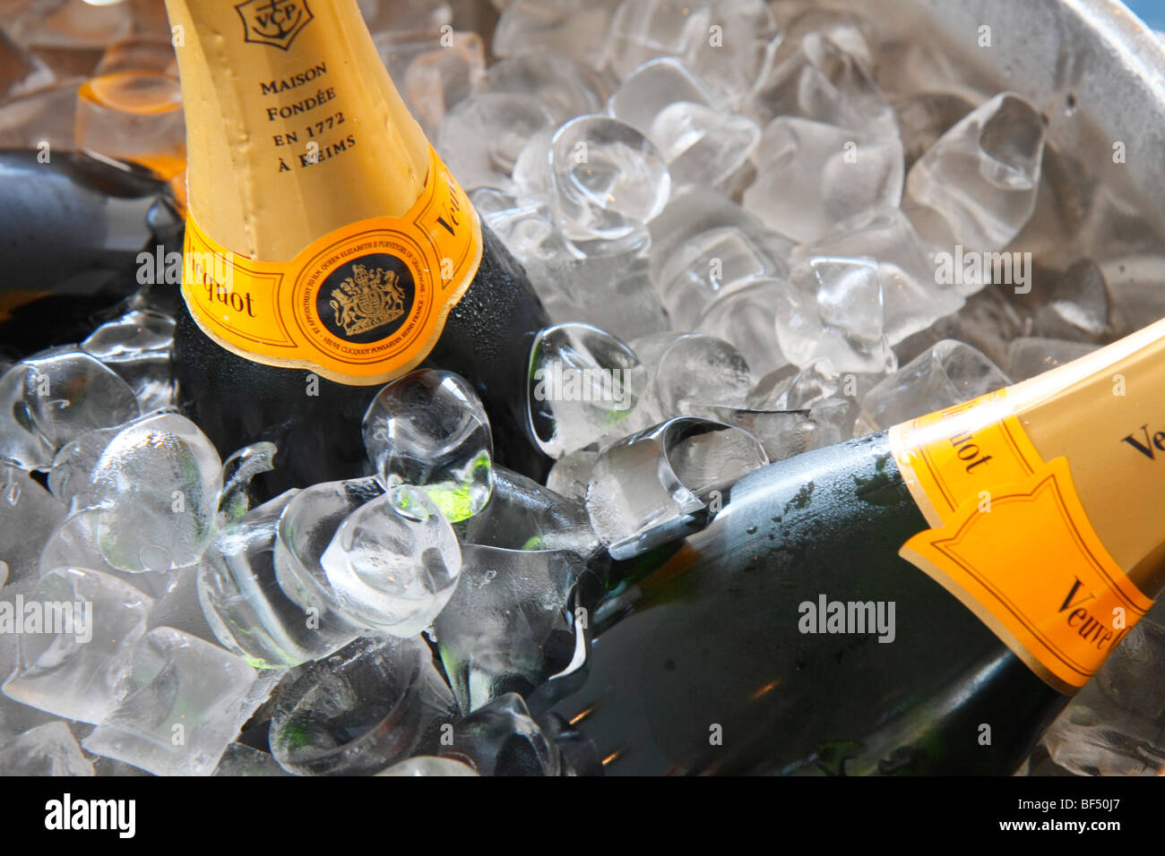 Champagne in a cooler with ice - Stock Image
