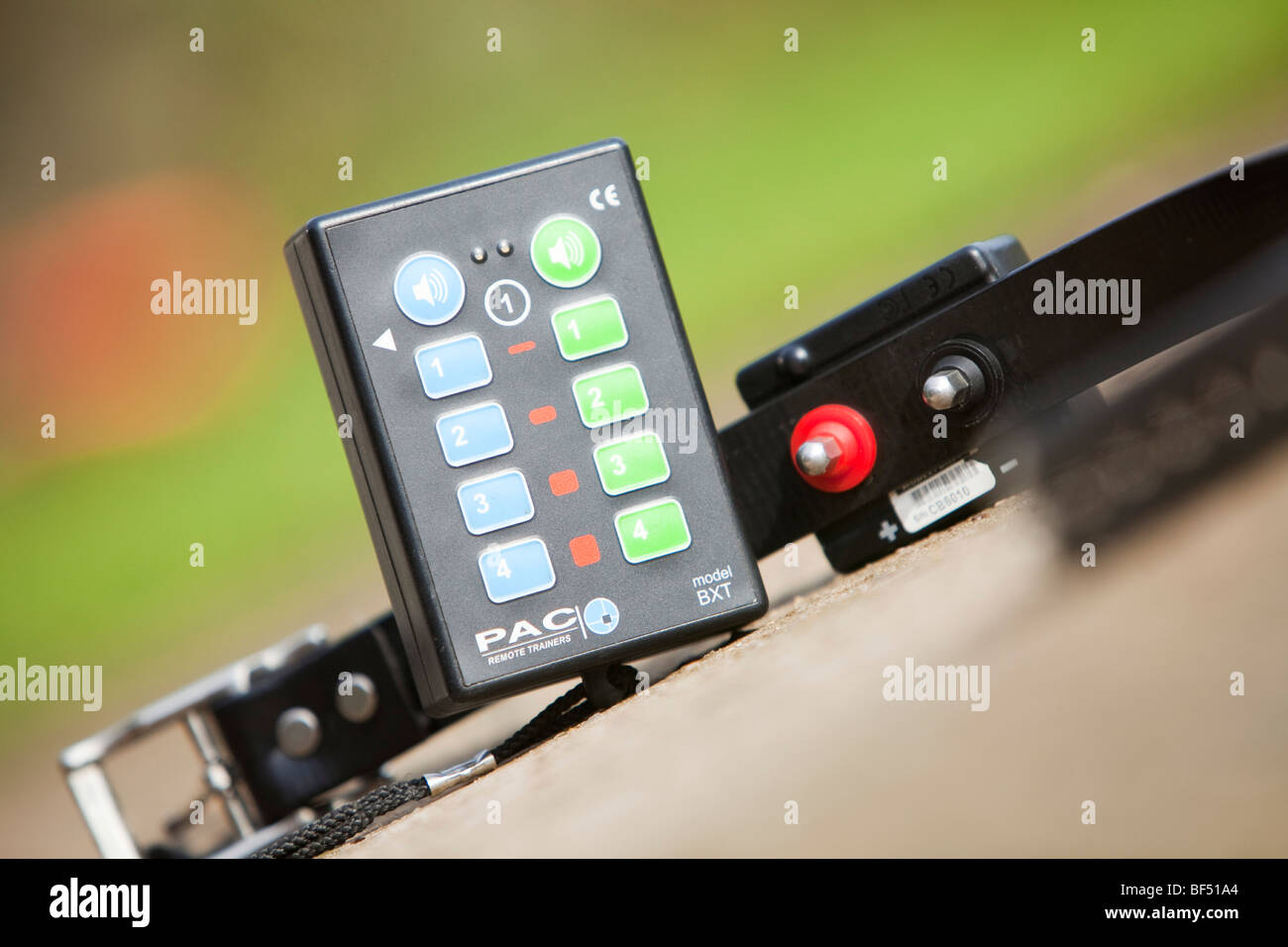An electric shock dog training collar and remote hand-set - Stock Image