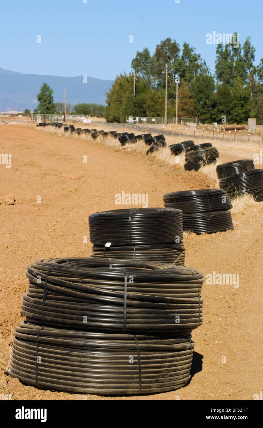 Rolls of drip irrigation tubing laid out along the edge of a field in preparation for the planting of a new almond - Stock Image