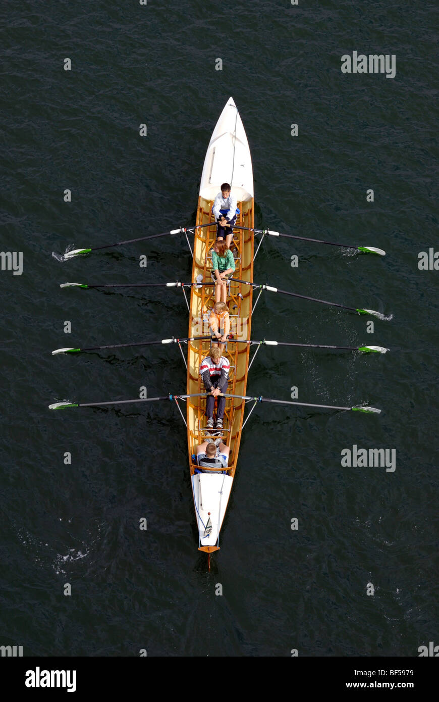 Water sports, double-coxed fours, young rowers in action - Stock Image