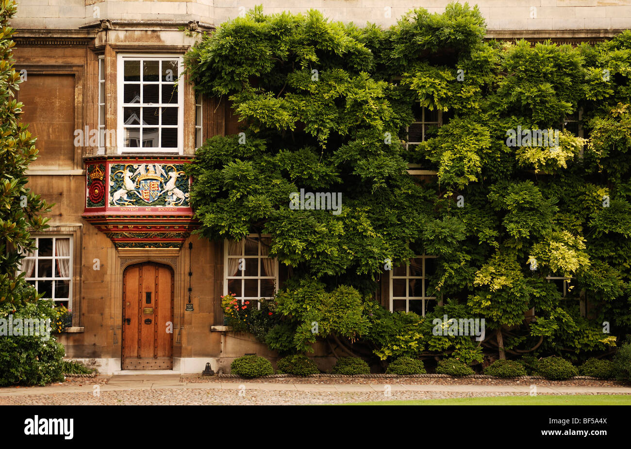 Coat of arms decorating a bay window, entrance to the Master's Lodge, facade covered with Wisteria (Wisteria - Stock Image