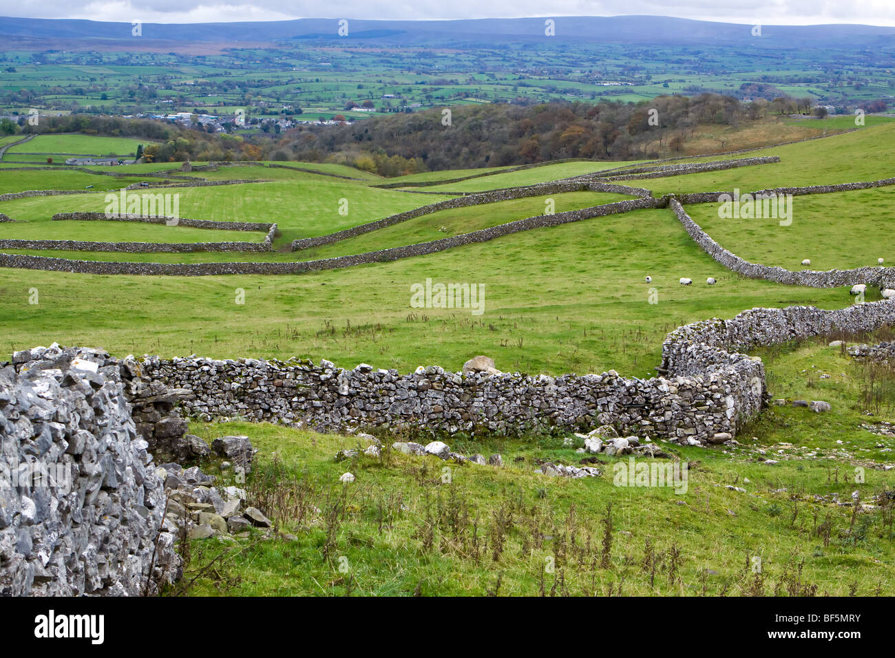 View of Yorkshire Dales near Ingleton - Stock Image