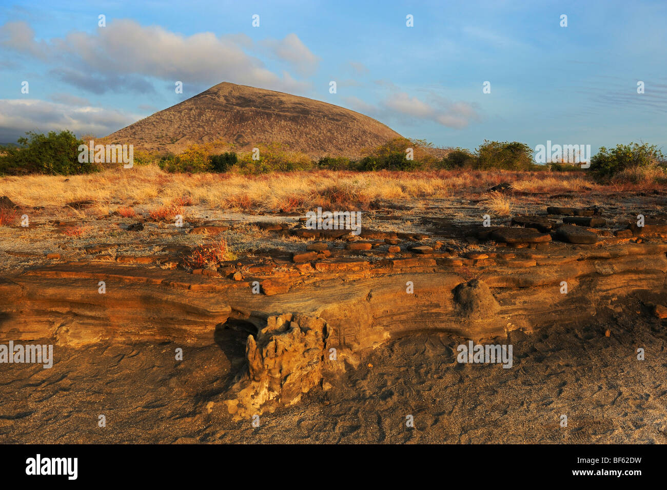 Puerto Egas Bay, Santiago Island, Galapagos Islands, Ecuador, South America Stock Photo