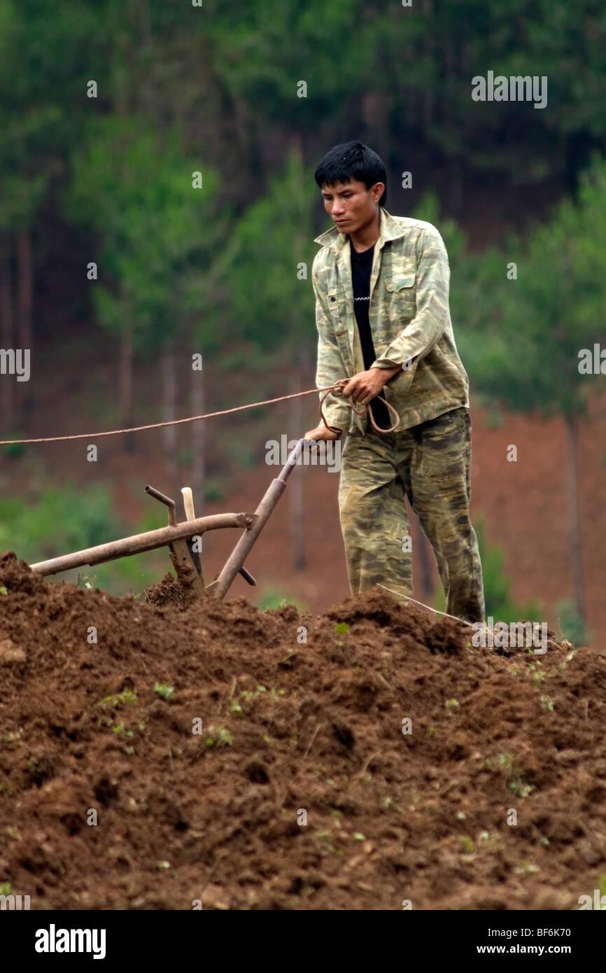 Vietnamese farmer ploughing the hills of North Vietnam. - Stock Image