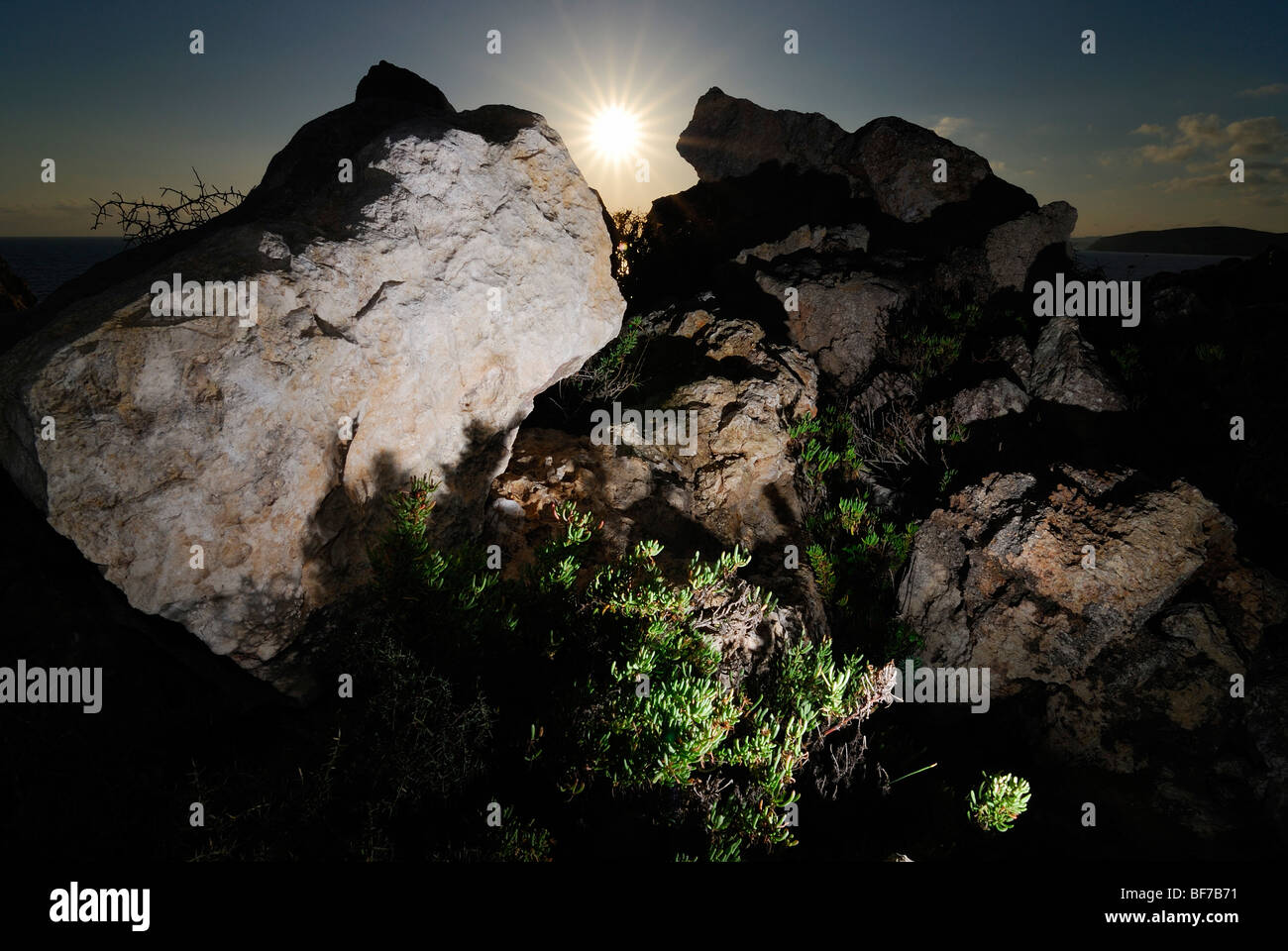 still life of rocks and grass with chiaroscuro effect - Stock Image