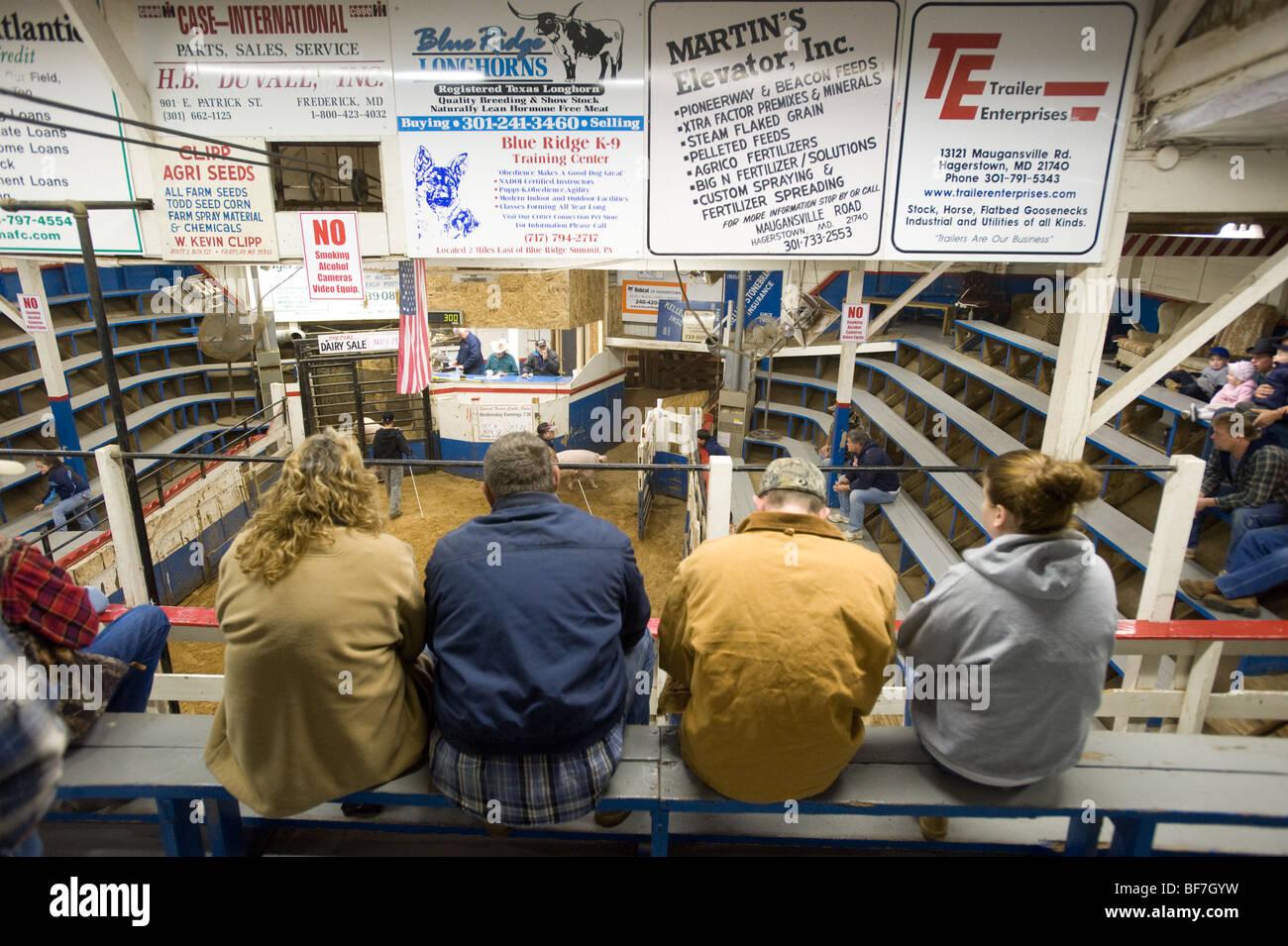 Auction Sale Stock Photos & Auction Sale Stock Images - Alamy