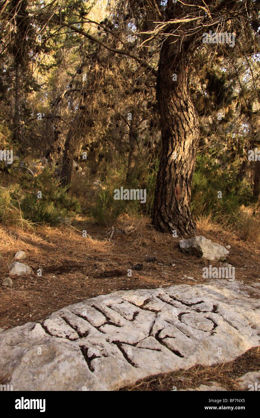 'Gezer Boundary' stones with inscriptions in Hebrew and Greek from the first century - Stock Image