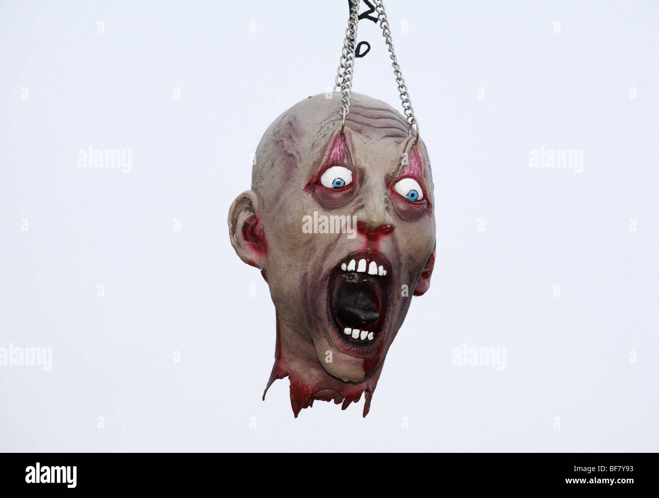 A horror toy dummy head suspended as part of an Halloween display. - Stock Image