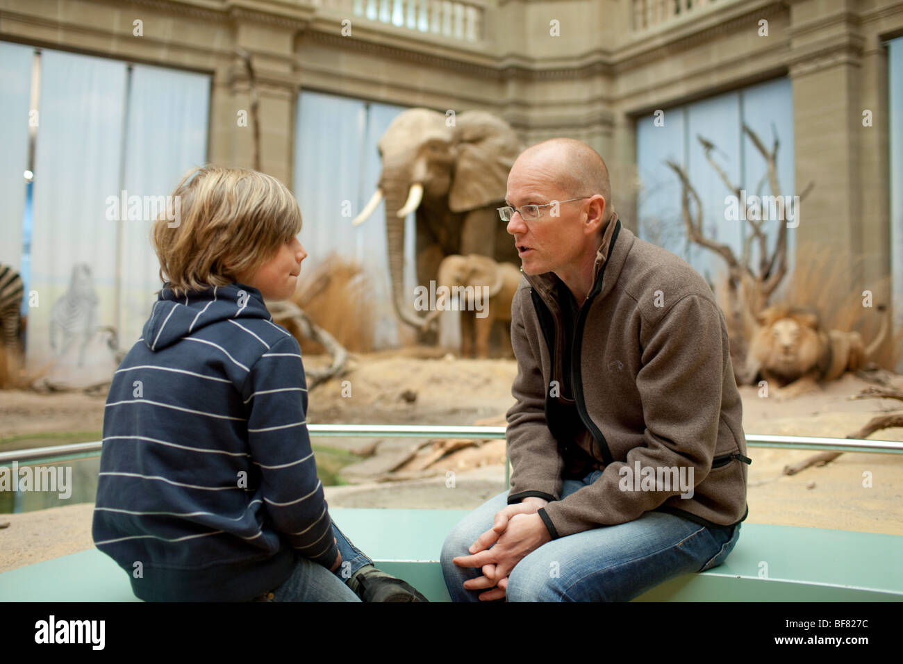 Father and Son at the museum - Stock Image