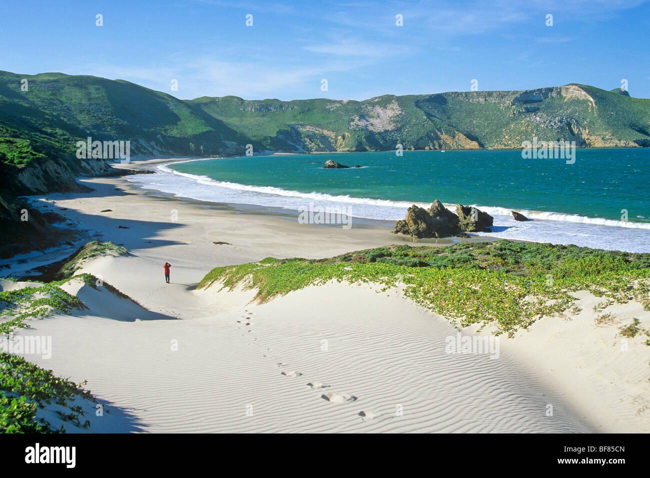 San Miguel Island Channel Islands National Park California