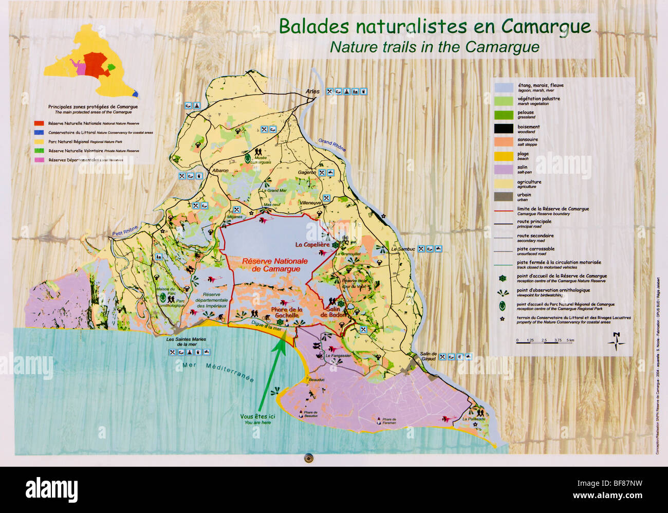 Parc Regional de Camargue, Provence, France - Stock Image