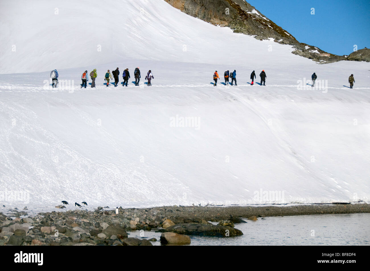 Members of an Antarctic expedition team making their way along a path at Paradise Bay - Stock Image